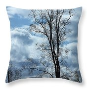 Amazing Birch Throw Pillow
