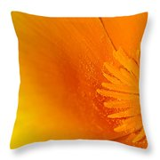 Amazing Colors Throw Pillow