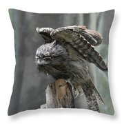 Amazing Frogmouth Bird With His Wings Extended Throw Pillow