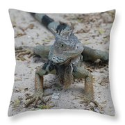 Amazing Iguana With A Striped Tail On A Beach Throw Pillow