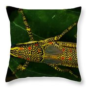 Amazing Insect Throw Pillow