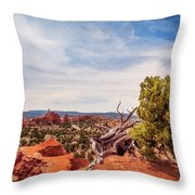 Amazing Juniper Tree At Kodachrome Basin State Park Throw Pillow