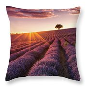 Amazing Lavender Field At Sunset Throw Pillow