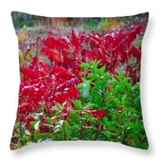 Amazing Nature Blessings Magic Colors Cherry Red Green Shrubs Plants Save  The Environment Throw Pillow