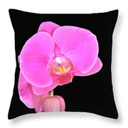 Amazing Pink Orchid With Black Background Orquidea Throw Pillow