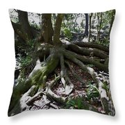 Amazing Roots Throw Pillow