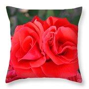 Amazing Rose Throw Pillow