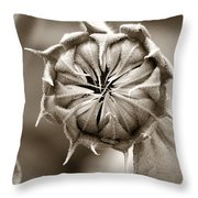 Amazing Sunflower Bud Throw Pillow