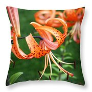 Amazing Tiger Lily Throw Pillow