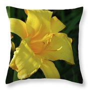 Amazing Yellow Lily Flowering In A Garden Throw Pillow