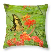 Amazonia Butterfly Throw Pillow