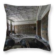 Ambassador Apartments May 11 2015 002 Throw Pillow