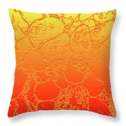 Amber Crackle Throw Pillow