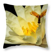 Amber Dragonfly Dancer Too Throw Pillow