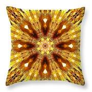 Amber Sun. Digital Art 3 Throw Pillow