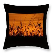 Amber Sundown Meadow Grass Silhouette  Throw Pillow