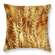 Amber Waves Of Grain 1 Throw Pillow