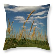 Amber Waves Of Grain Throw Pillow