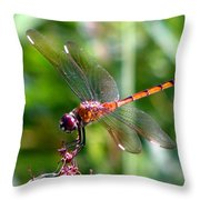 Amber Wing 2 Throw Pillow