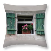 Amberg Window Throw Pillow