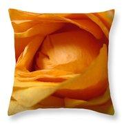 Amber's Rose Throw Pillow