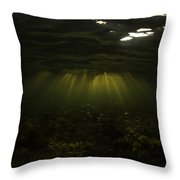 Ambient Perch Throw Pillow