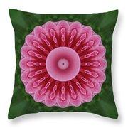 America Climbing Rose Kaleidoscope Throw Pillow