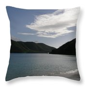 America Point Cinnamon Bay St John Usvi Throw Pillow