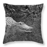 American Alligator 2 Bw Throw Pillow
