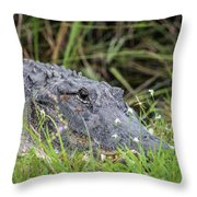 American Alligator Throw Pillow