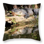 American Alligator With Caterpillar Throw Pillow