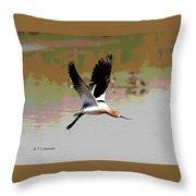 American Avocet Flying Throw Pillow