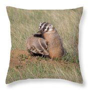 American Badger Cub Climbs On Its Mother Throw Pillow
