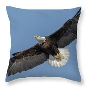 American Bald Eagle 2017-18 Throw Pillow