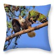 American Bald Eagle 3 Throw Pillow