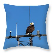 American Bald Eagle Perched On Communication Tower Throw Pillow