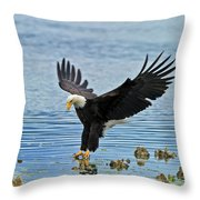 American Bald Eagle Sets Down On Fish Throw Pillow