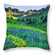 American Basin In Bloom Throw Pillow
