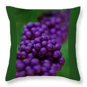American Beautyberry Throw Pillow