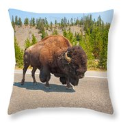 American Bison Sharing The Road In Yellowstone Throw Pillow
