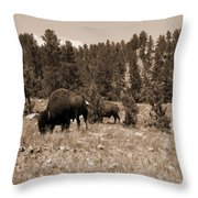 American Bison Vintage Throw Pillow