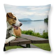 American Breed On Table Throw Pillow