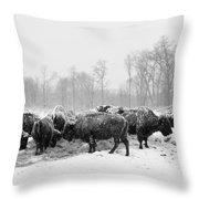 American Buffalo #2 Throw Pillow