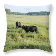 American Cattle Throw Pillow