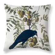 American Crow Throw Pillow by John James Audubon
