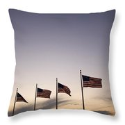 American Flags On The Mall Throw Pillow
