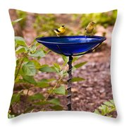 American Goldfinch At Water Bowl Throw Pillow