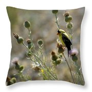 American Goldfinch Having Lunch On Bakery Hill 2 Throw Pillow
