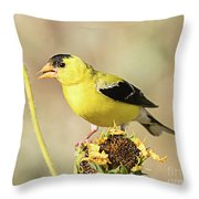 American Goldfinch On Sunflower Throw Pillow