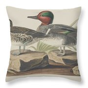 American Green-winged Teal Throw Pillow